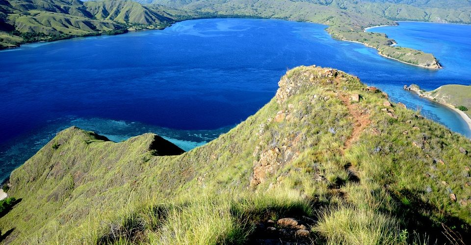 Going to Komodo Island? Here Are Things You Need to Take Notes