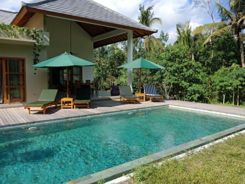 Modern Ubud villas with a private pool